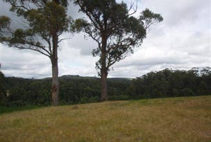 Lot 5 Hilders Road, Irishtown, Tas 7330
