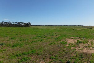 Lot 27960, Rabbit Proof Fence Road, Mukinbudin, WA 6479