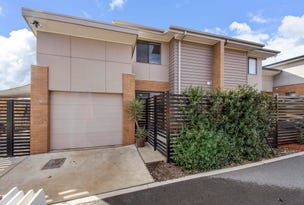 51 Turbayne Crescent, Forde, ACT 2914