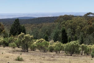 Lot 5 Warrumba Road, Bumbaldry, NSW 2794