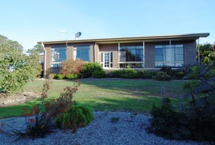 437 Youngs Road, Lileah, Tas 7330