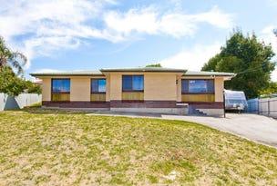 1 Trevor Court, St Agnes, SA 5097