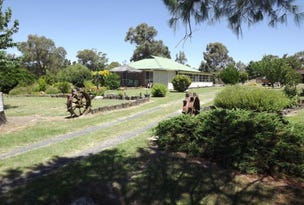 89 Severn River Road, Dundee, NSW 2370