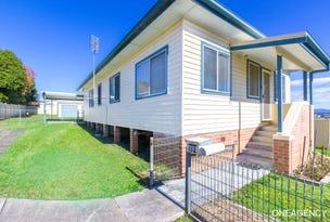 132 Macleay Street, Frederickton, NSW 2440