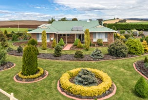 436 Braddons Lookout Road, Forth, Tas 7310
