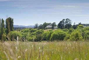 Lot 137 Throsby Views, Moss Vale, NSW 2577