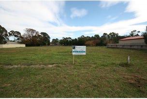 PL1 Butmaroo St, Bungendore, NSW 2621