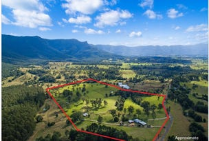 1010 BRAYS CREEK ROAD, Tyalgum, NSW 2484