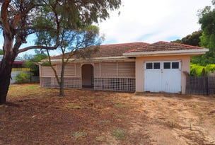 52 Myall Avenue, Murray Bridge, SA 5253