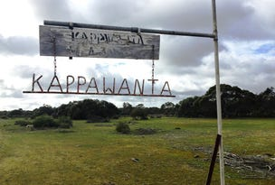 2212 Kappawanta Road, Elliston, SA 5670