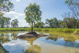 32 Pink Lily Road, Pink Lily, Qld 4702
