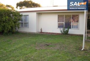 99 Park Terrace, Bordertown, SA 5268
