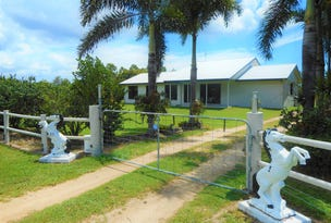 30 Blue Mountain Drive, Bluewater Park, Qld 4818