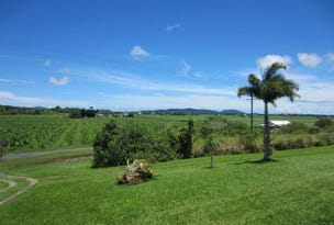 129 Old Ferry Road, Innisfail, Qld 4860