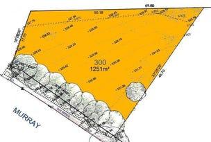 Lot 300, Lot 300 Murray Street, Angaston, SA 5353
