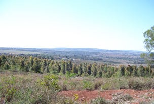 Muller Road, Coolabunia, Qld 4610