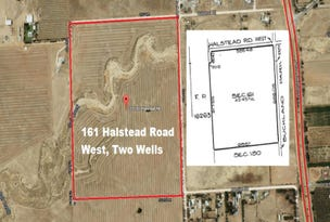 Lot 161 Halstead Road West Two Wells, Virginia, SA 5120