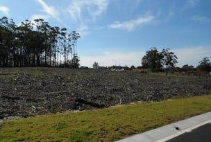 4 (Lot 307) Iluka Cres, Narrawallee, NSW 2539