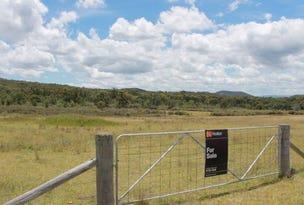 Lot 14 Catarrh Creek Road, Torrington, NSW 2371