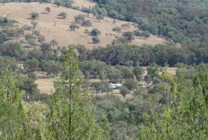 894 Reedy Creek Road, Tenterfield, NSW 2372