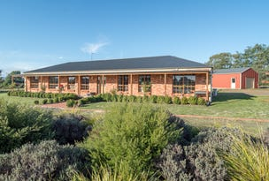 1542 Illawara Road, Carrick, Tas 7291