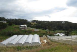L3,323 Old Coast Road, Korora, NSW 2450
