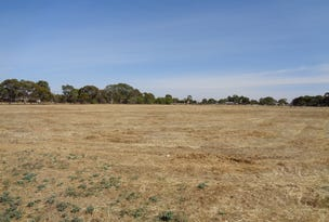 8 Bailey Road West, Two Wells, SA 5501