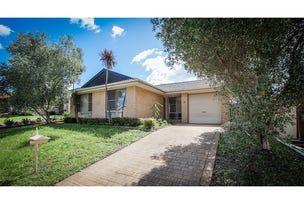 3 White Cliffs Avenue, Hoxton Park, NSW 2171