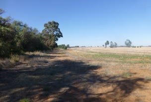 Lot 121, Budd Street, Berrigan, NSW 2712