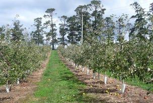 Bells Line of Road, Bilpin, NSW 2758