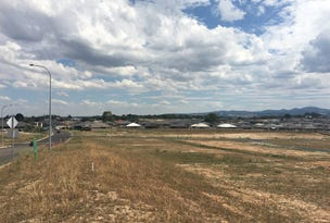 Lot 420, Andres Street Queensbury Meadows, Orange, NSW 2800
