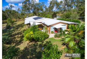 24 Rhys Avenue, The Caves, Qld 4702