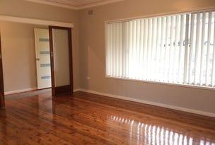 19 Branxton Street, Waratah West, NSW 2298