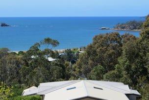 14B Sanctuary Place, Catalina, NSW 2536