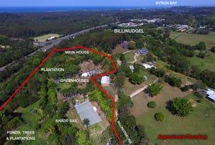 171 Billinudgel Road, Billinudgel, NSW 2483