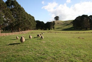 39 Johns Hill Road, Irishtown, Tas 7330