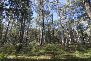 Lot 1 Dredge Hole Lane, Harrietville, Vic 3741