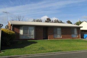 10 Castle Street, North Bendigo, Vic 3550