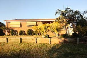41 Semillon Crescent, Eschol Park, NSW 2558
