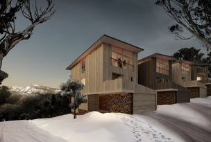 Mount Buller, address available on request