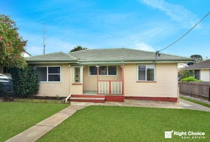9 Beaton Street, Lake Illawarra, NSW 2528