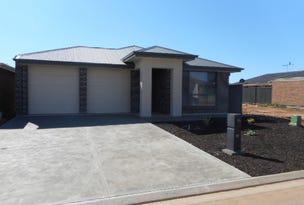 23 Baxter Road, Penfield Gardens, SA 5121