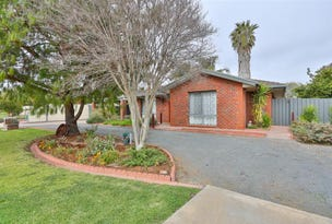 55 Belleview Drive, Irymple, Vic 3498