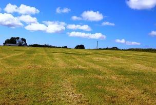 Lot 2 Upper Scotchtown Road, Smithton, Tas 7330