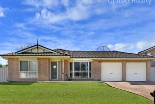 41 Davina Crescent, Cecil Hills, NSW 2171