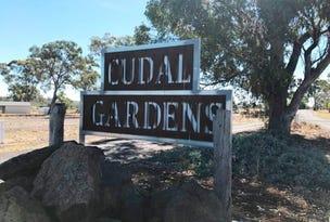 Lot 9,10,13 & 14, Rodda Drive, Cudal, NSW 2864