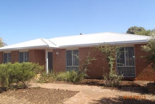 2 John Glenn Place, Dubbo, NSW 2830