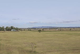 Lot 1 DP 81332 New England Highway, Singleton, NSW 2330