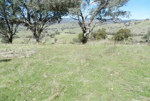 Lot 2 Peach Gardens Road, Bigga, NSW 2583