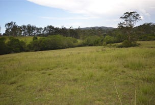 Lot 2/1161 Pipeclay Rd, Pipeclay, NSW 2446